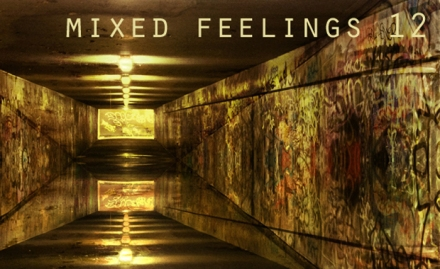 DS Featured Imagemixedfeelings12